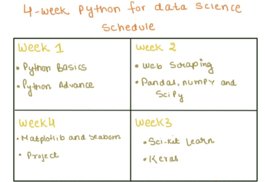 4 week python study schedule
