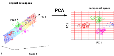 Principal Component Analysis in R – Walk Through